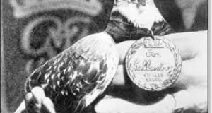 palomas famosas