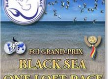 black sea one loft race