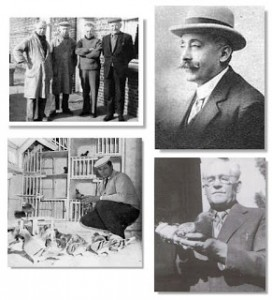 historia de la colombofilia