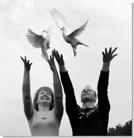 palomas blancas para eventos