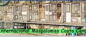 derby internacional maspalomas costa canaria