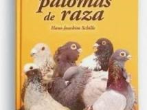 guía de las palomas de raza