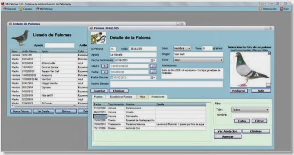 Mi palomar - Software para la gestión del palomar