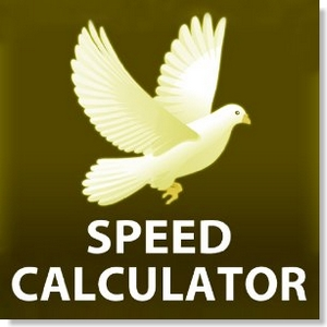 app speed calculator racing pigeons