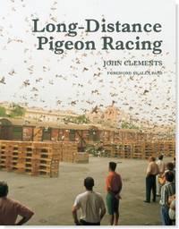 palomas de carrera de larga distancia