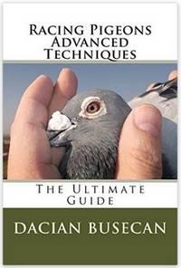racing pigeons advanced techniques