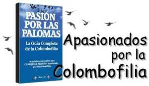 Pasion por las palomas